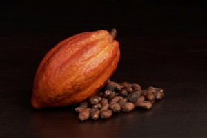 Cacao pod and beans